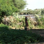 """A Turkana child, still too young for school, pumps water from the nearby Turkwel River to the garden patches. """"We work all day,"""" said Peter, the garden manager. """"If your stomach is empty, you might stop when the sun is high. But when you stop working, you lose time."""" (Khloe Meitz)"""