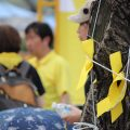 Yellow ribbons tied to the trees and worn by the demonstrators symbolize two things: hope that some of the missing victims are still alive and solidarity with the victims' families. Photo by Taylor Ha.